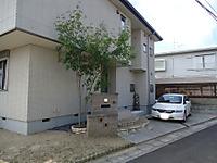 Dsc00361_3