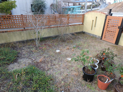 Gardentaoo11_2
